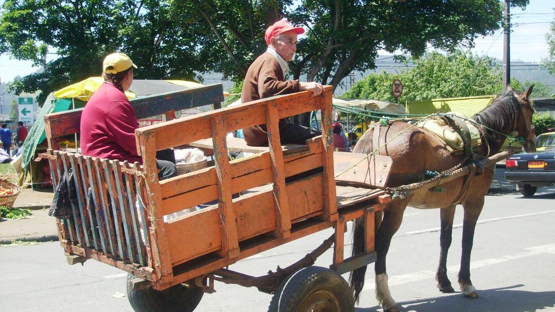 Feria Pinto de Temuco