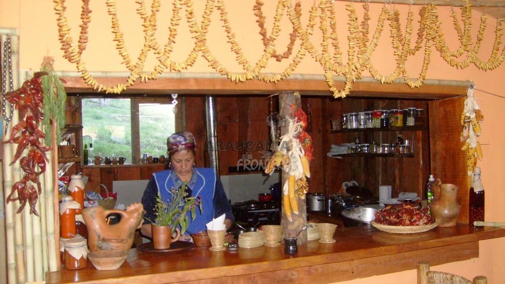 Gastronomía Mapuche Mapu Lyagl – Curarrehue