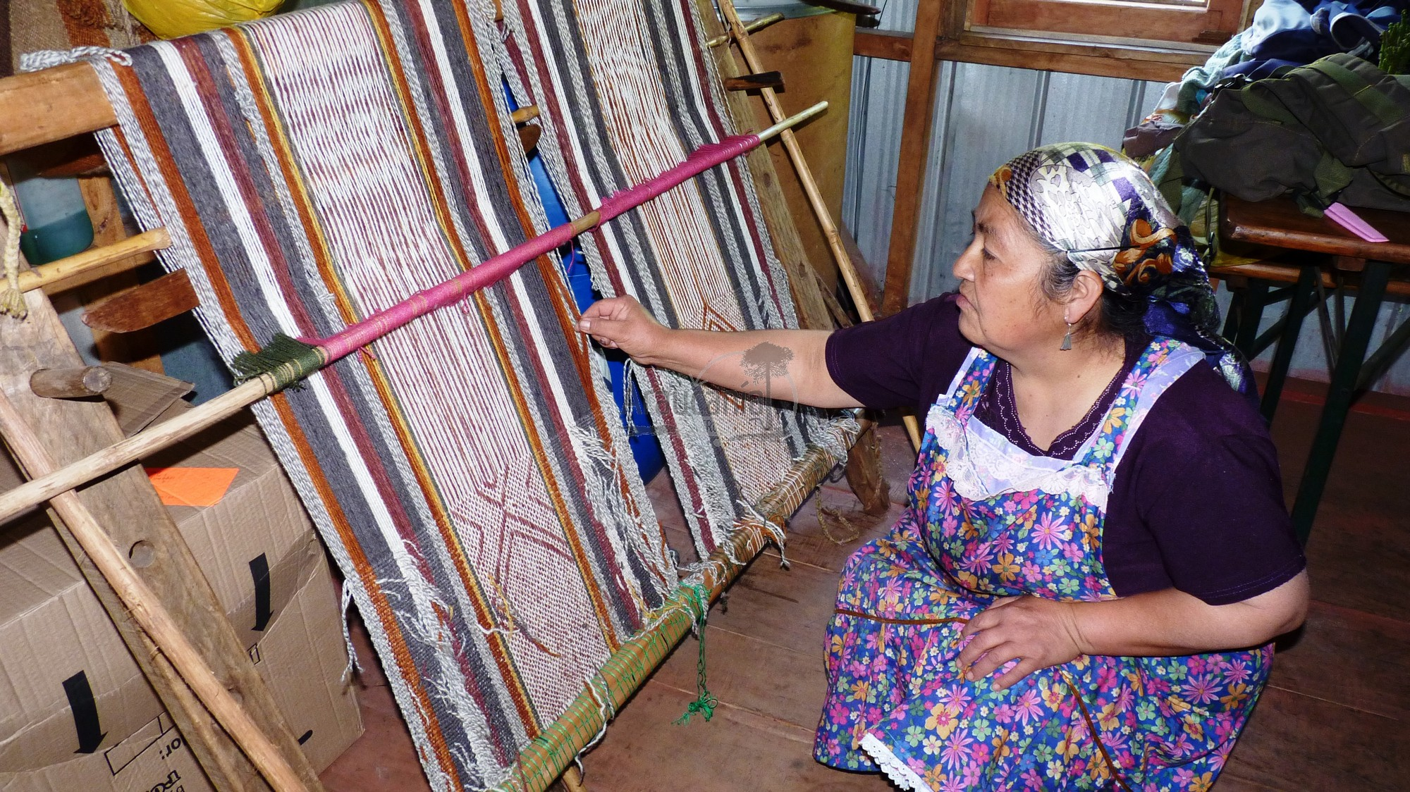 Textilería mapuche Juana Millarreal – Cholchol