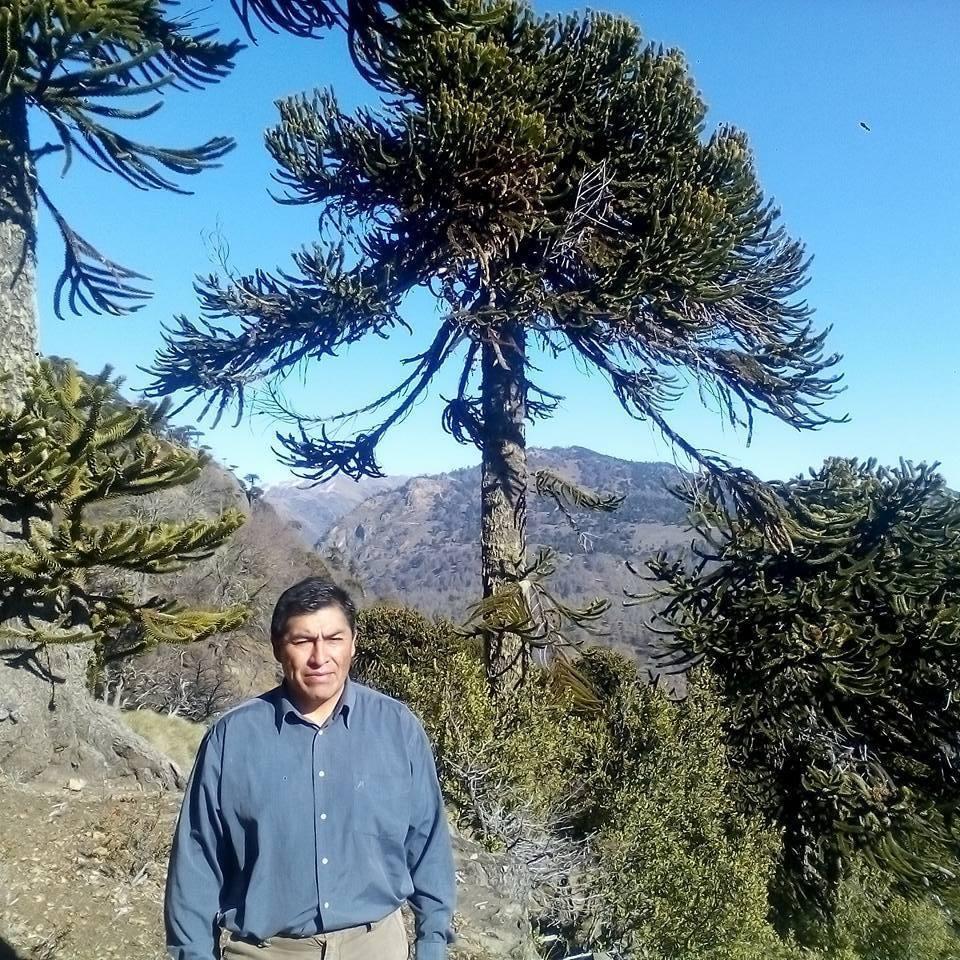 Rutas Ancestrales Pehuenche Juan Carlos Domihual – Lonquimay