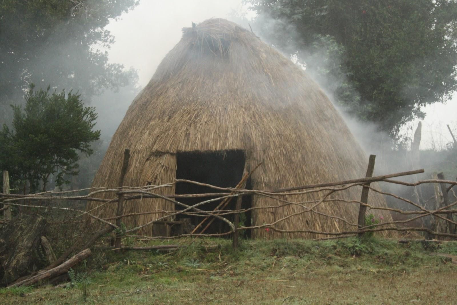Turismo Mapuche Anweyeko – Saavedra
