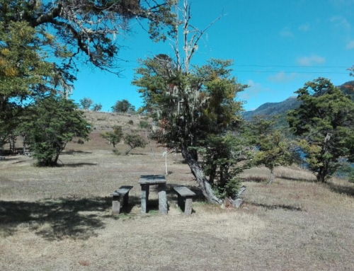 Cabañas Lafquen Mahuida en Icalma – Lonquimay