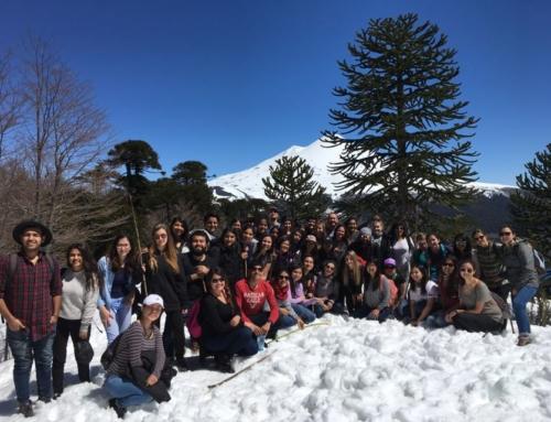 """Estudiantes extranjeros visitan Parque Nacional Conguillio como parte del curso """"Amunche"""" de Temuco UniverCiudad"""