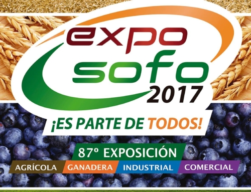 08 al 12 noviembre: Expo Sofo 2017