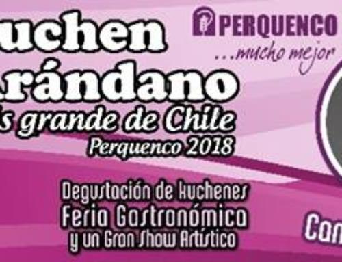 28 de enero: Kuchen de arándano más grande de Chile #Perquenco 2018