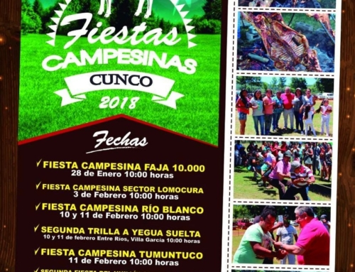 Actividades Verano #Cunco 2018