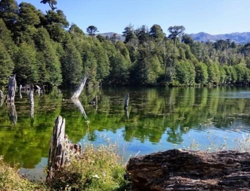 Este fin de semana: Entrada Liberada a los Parques Nacionales en el marco del Día del Patrimonio