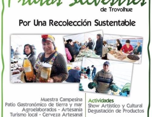 14 abril: Este sábado se realizará la Feria de Frutos Silvestre de Trovolhue #Carahue