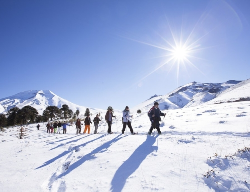 Corralco lanza programa de introducción al montañismo