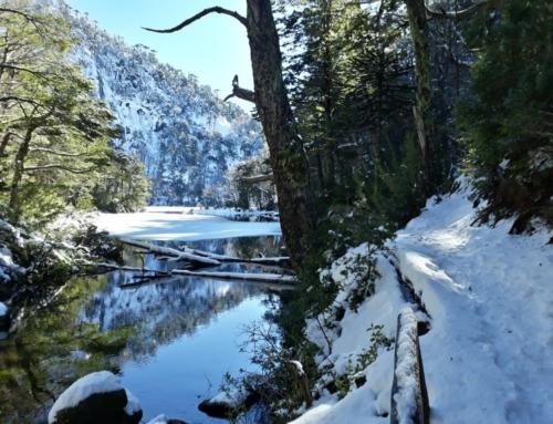 Anuncian proceso de reapertura gradual de Parques Nacionales con estrictos protocolos sanitarios
