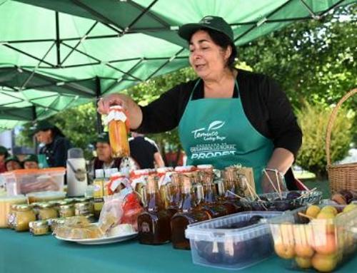 Temuco: Pequeños productores rurales de la comuna presentan sus productos en Feria de Promoción