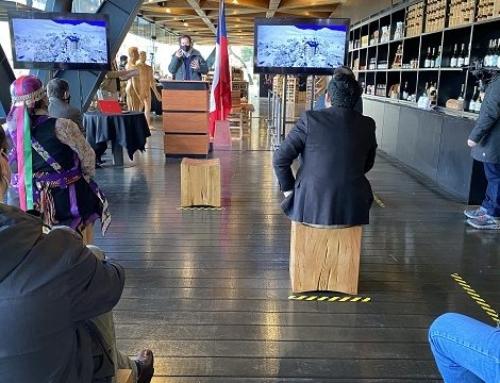 Ministro de Economía lanzó oficialmente la tienda online del Pabellón Araucanía