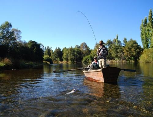 Pescadores recreativos conocen proyecto de Ley que aumenta sanciones a la pesca furtiva
