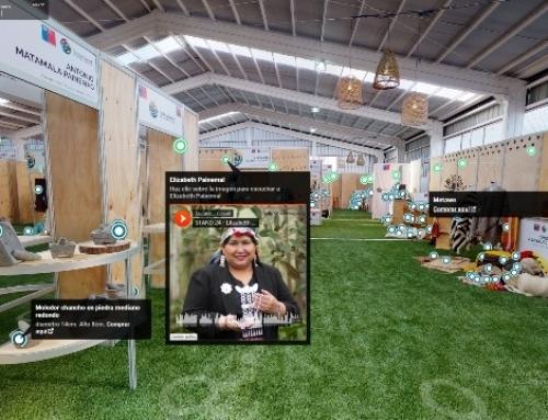 CONADI inauguró primera plataforma de e-commerce para emprendedores mapuche afectados por Coronavirus
