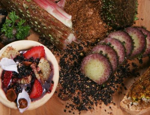 """Hongos, trufas y frutos silvestres, los ingredientes estrellas del """"Chef del bosque"""""""