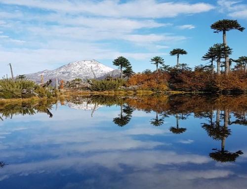 Kutralkura celebró con exitoso webinar día del Geoturismo