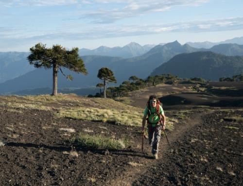 INE Araucanía lanza boletín estadístico que mide el impacto económico del turismo