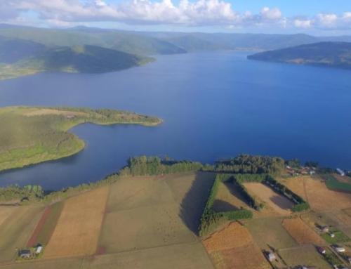 Las iniciativas que comunidades mapuche de Lleulleu desarrollan para mejorar su calidad de vida