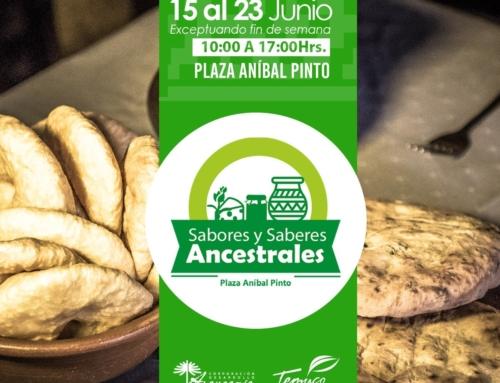 15 al 23 de junio: Feria Sabores y Saberes ancestrales Plaza de Armas Temuco