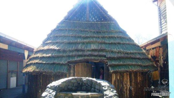 Gastronomía Mapuche Ruka Newen – Villarrica