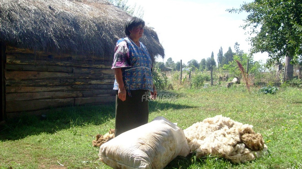 Turismo Mapuche María Mena Millao – Padre Las Casas