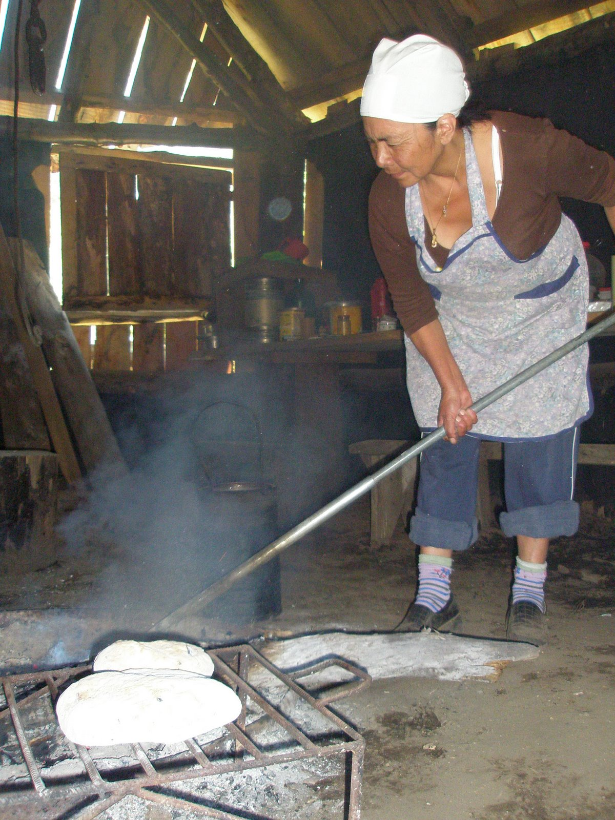 Turismo Mapuche Ruka de Mis Orígenes – Lonquimay